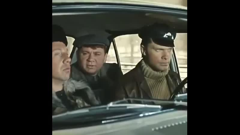 Сам ты ёлка... 😂 Фильм Джентльмены удачи 1971 г.