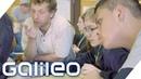 Die wohl coolste Sprachschule der Welt Hier lernen Amerikaner Deutsch Galileo ProSieben