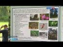 Вести-Москва • Жулебинский лес обретет вторую жизнь