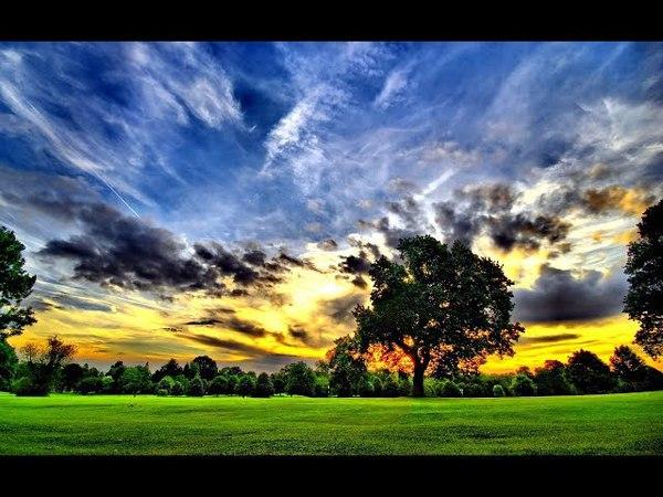 Novo Testamento de Carreirinha - Atos 7