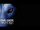 David Guetta feat. Sia - She Wolf Falling To Pieces