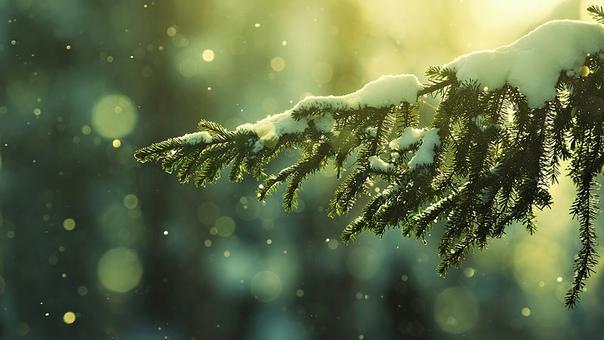 И лёд тает, когда мы светим, и сердца открываются, когда мы любим, и люди меняются, когда мы открыты, и чудеса происходят, когда мы верим.