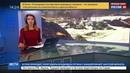 Новости на Россия 24 Общероссийский народный фронт объявил войну свалкам мусора в Мурманске