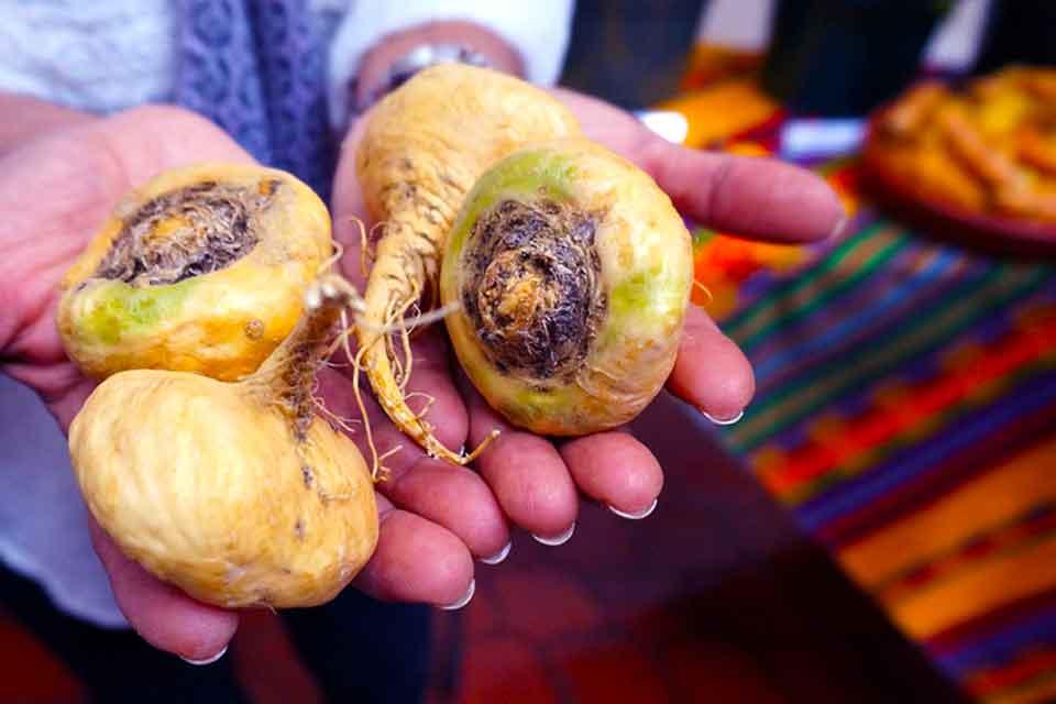 Порошок маки перуанской