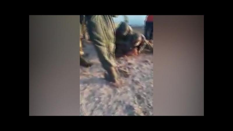 В Хабаровском крае задержание браконьеро переросло в единоборство