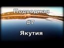 Подводная Якутия 7 Тугун Супер рыба Ловим Тугуна
