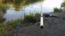 Рыбалка как рыбалкаКарась японский и словянский! Анекдот.Ковши Херсон