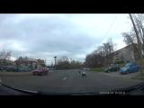Аисты дерутся прямо на дороге Регистратор заснял драку аистов на проезжей части в Минске
