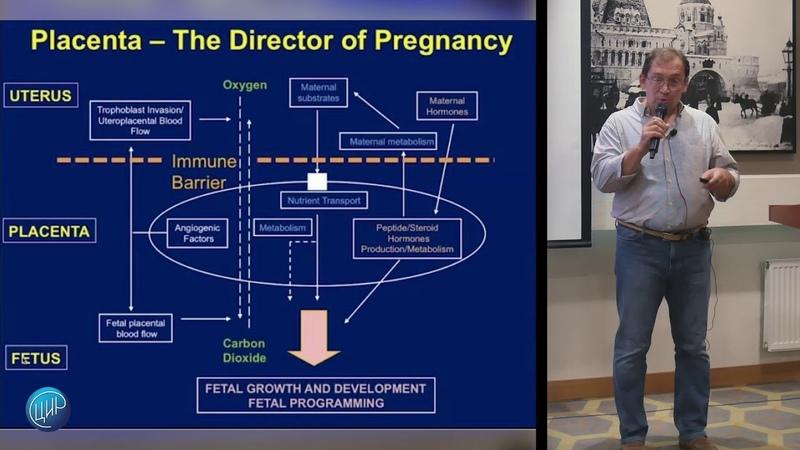 «Современные подходы к антенатальному наблюдению. Плод как пациент. «Placenta clinic» Гузов И.И.