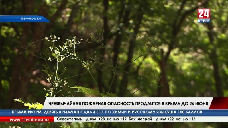 Чрезвычайная пожарная опасность продлится в Крыму до 26 июня. Об этом сообщили в МЧС Республики и предупредили костры разводить