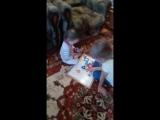 дочка Ладушка с родной племянницей Миланой играют у бабушки с дедушкой? долгожданная встреча ?