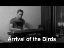 The Cinematic Orchestra: Arrival of the Birds