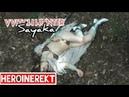 Sayaka Superheroine Witch Hunter part 1