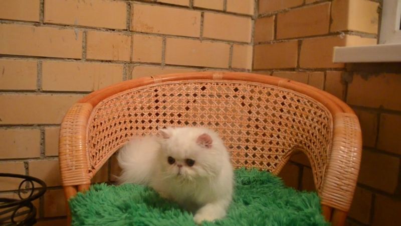 Моя красивая кукла Олюшке 5 месяцев