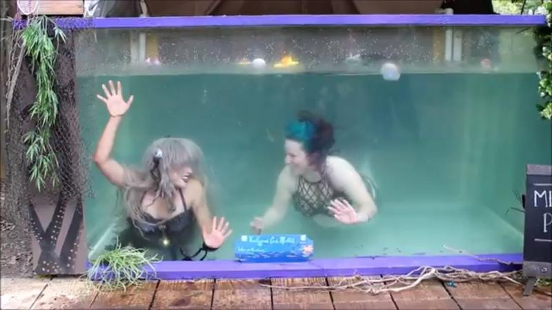 Mermaids at the Michigan Ren Fest 2018 | LIVE MERMAIDS SWIMMING IN A TANK | Mermaid Show Videos