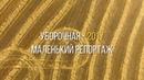 Уборочная-2017. Маленький репортаж