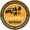 Поисковый  отряд Лиза Алерт Воронеж
