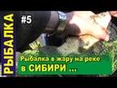 Рыбалка в Сибири в тайге на реке в самую жару. Поплавочная удочка. Чебак, елец, карась, пескарь.