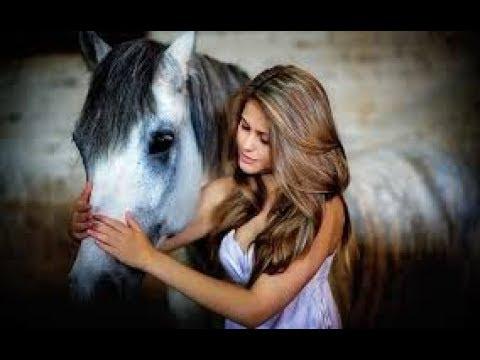 ЖЫЛҚЫ ТУРАЛЫ МАҚАЛ-МƏТЕЛДЕР || About Horses