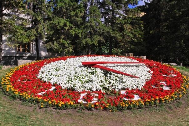 Цветочные часы Новосибирска