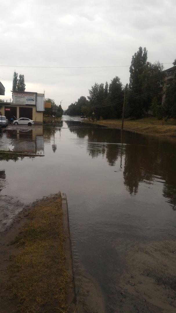 В Курске после грозы затоплены улицы и повалено дерево
