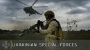 UKRAINIAN SPECIAL FORCES 2 years anniversary