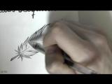 как нарисовать перо карандашом