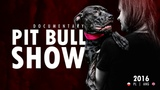 PIT BULL SHOW 2016 DOCUMENTARY PLANG