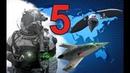Пять видов оружия которые изменят войны будущего.