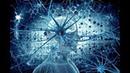 Упадете когда узнаете где хранится человеческая ПАМЯТЬ Ученые и сами не ожидали такого открытия