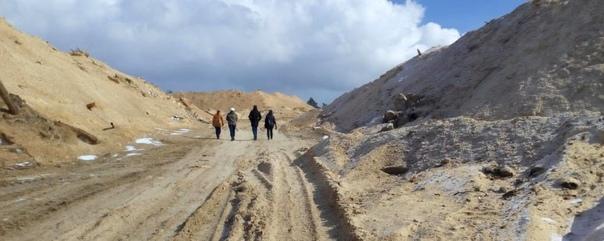 В Усть-Илимске на месте фермерского хозяйства устроили незаконную свалку опилок