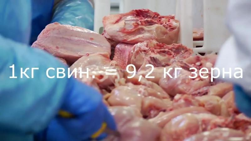 №2 К чему приводит постоянное потребление мяса Отказ от потребления OBEY ▲