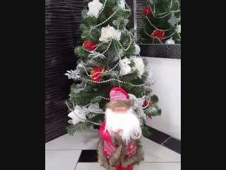 🎄А это наша красавица ЁЛОЧКА !!! 🎄🎄🎁🎁 А песенку поет дедушка Мороз из магазина