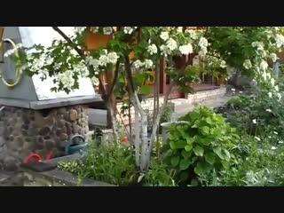 Дачный ответ система полива огорода и сада-Дачники