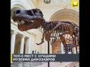 Топ-5 мест с лучшими музеями динозавров