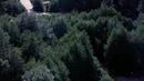 Дерево для повешенных (1959) - Вестерн