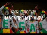 Сообщество Туту.ру на ЧМ по футболу в России