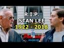 R.I.P. STAN LEE (1922 - 2018)