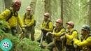 Встречный пал Тушение лесного пожара Дело храбрых 2017 год