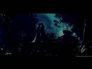 aragorn X arwen _ we might fall