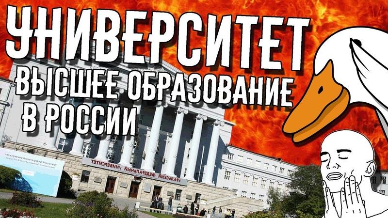 Университет продолжение школы Универ и высшее образование в России Goose