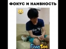 Animal_planet_vid_1_28062018_0756.mp4