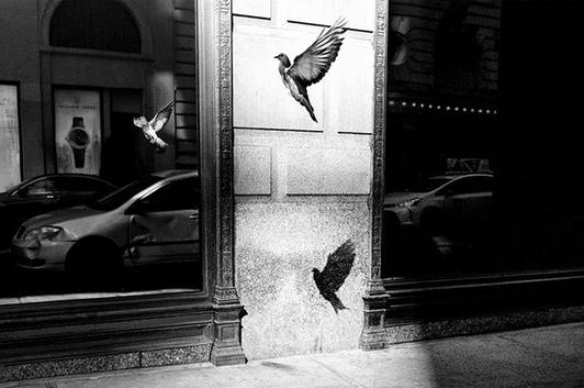 Лондонский фотограф Алан Шаллер (Alan Schaller) является «именитым» мастером уличной фотографии, который благодаря умелой игре с освещением окружающего пространства создаёт контрастные снимки,
