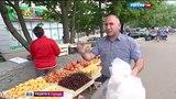 Вести-Москва Торговцы с земли вольготно чувствуют себя на юго-западе Москвы