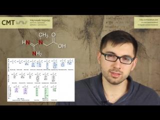 Выбираем протеин правильно. как избежать обмана лишние аминокислоты. научный подход
