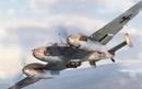 Bf 110 B Rhino