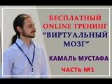 Камаль Мустафа 28 03 2018 Вебинар Виртуальный мозг Часть 1