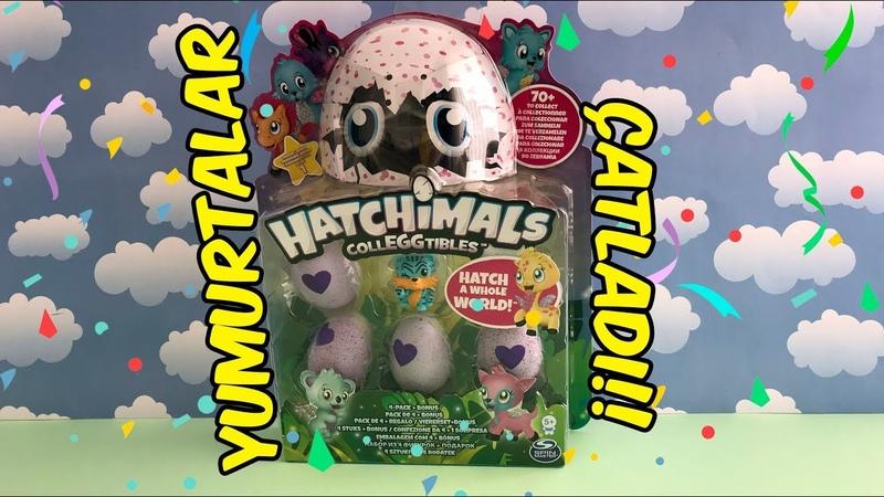 Pijamaskeliler ile Hatchimals Colleggtibles Çatlayan Sürpriz Yumurta Açılımı