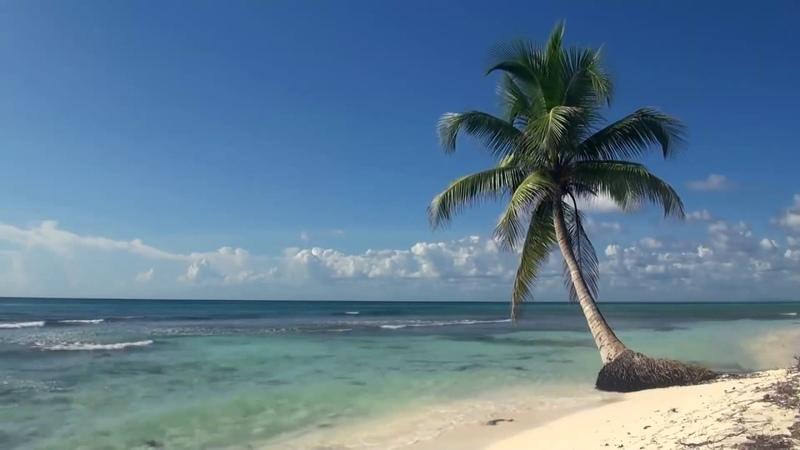 Шум волн моря. Тропический пляж. Вспомним лето)
