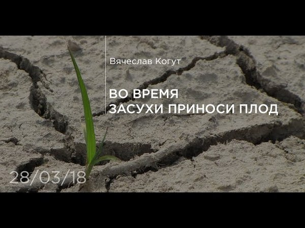 Во время засухи приноси плод - Вячеслав Когут